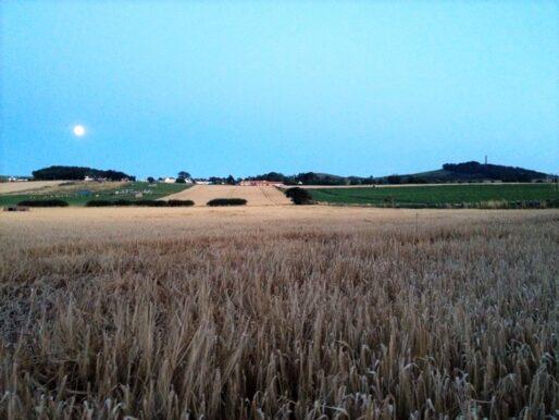 Mungoswells Farm